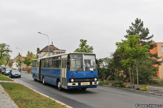 den-pid-melnik-15