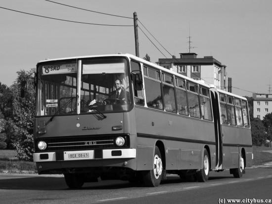 dod-pro-bus2